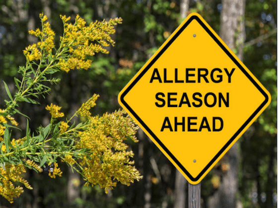 spring allergy season